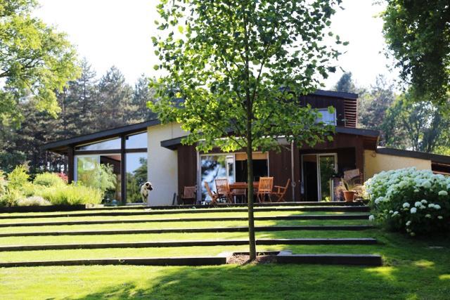Renovation d'une maison et de son jardin : 02.JPG