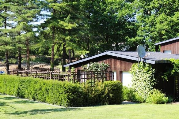 Renovation d'une maison et de son jardin : 03.JPG